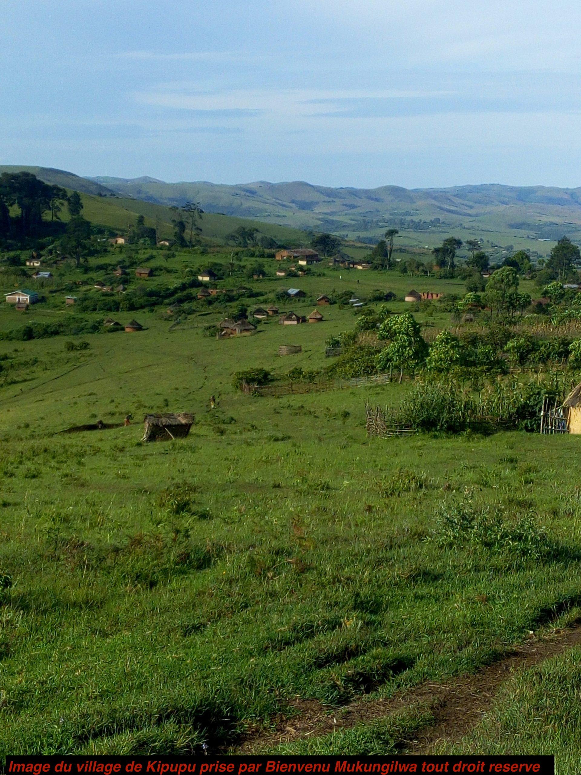 Mai Mai Mutetezi & la Police nationale congolaise à Kipupu : Analyse du rapport de forces intra-champ de sécurité