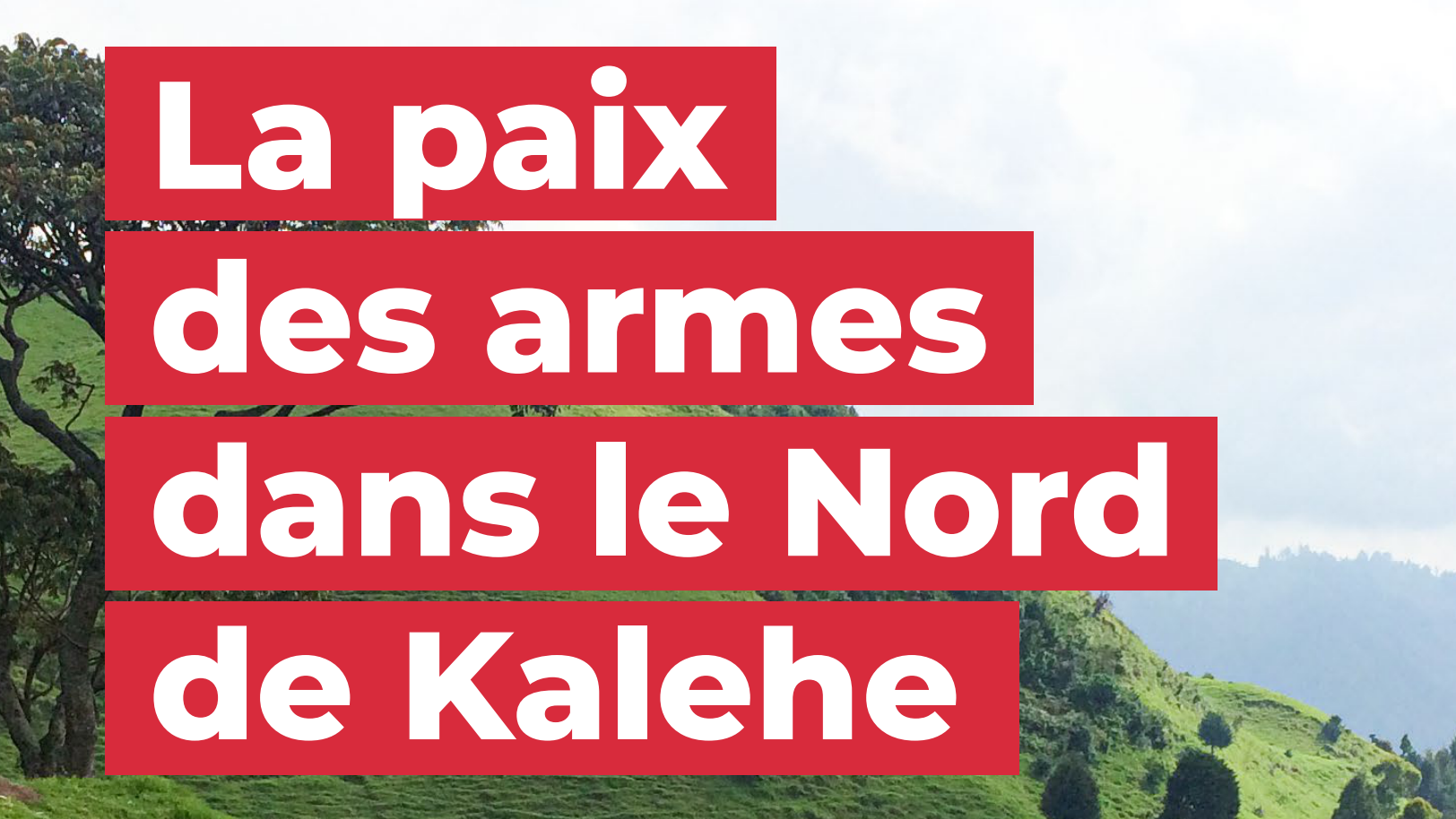La paix des armes dans le Nord de Kalehe